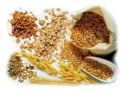 Jela sa integralnim pirinčem (1-21)